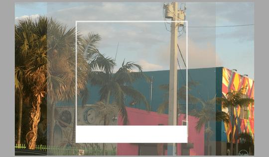 NaysVoice travel to Wynwood Miami Florida