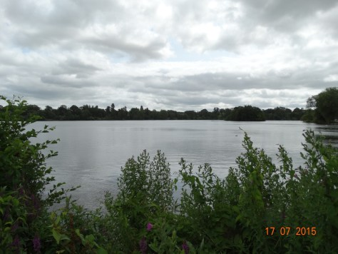The Mere (from where Ellesmere got its name)