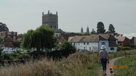 the view from the Severn Hams