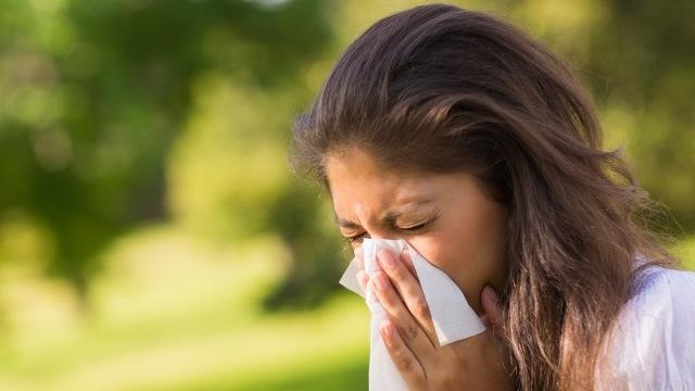sneeze-sick-allergies_186666