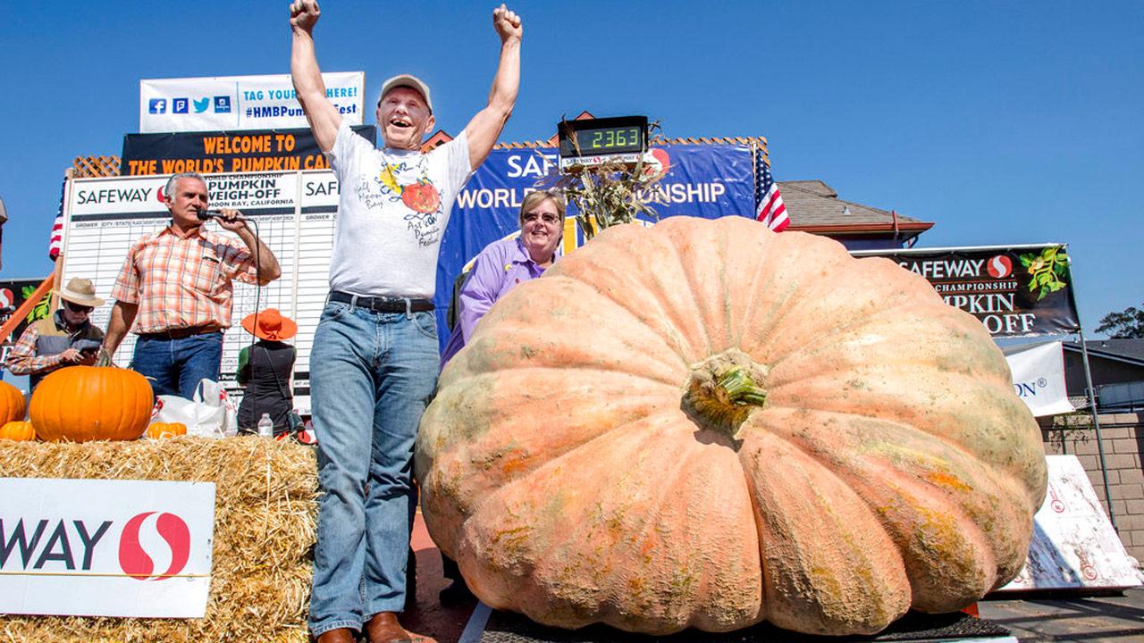 giant-pumpkin_357040