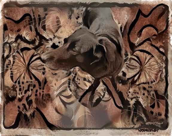 Dog cave paint deepdream