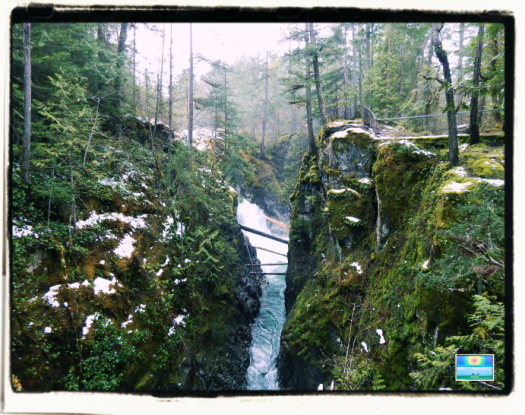 Little Qualicum falls spring