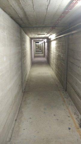 Ein Bunkergang wie für Roman gemacht