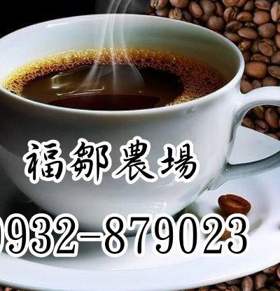 福鄒農莊阿里山高山咖啡