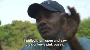 Seks met een ezel: traditie in Colombia