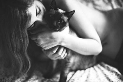 Cats and Pussies Davide Ambroggio 2