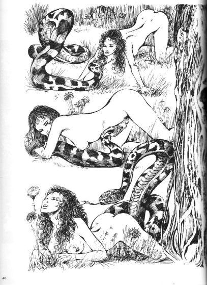 Emmanuelle-Arsan-bande-dessinee-guido-crepax-6