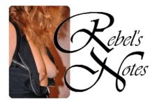 Seksblogger: Rebel's Notes