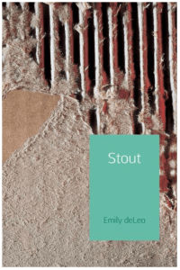 Boekrecensie: Stout – Emily DeLeo (eBook)