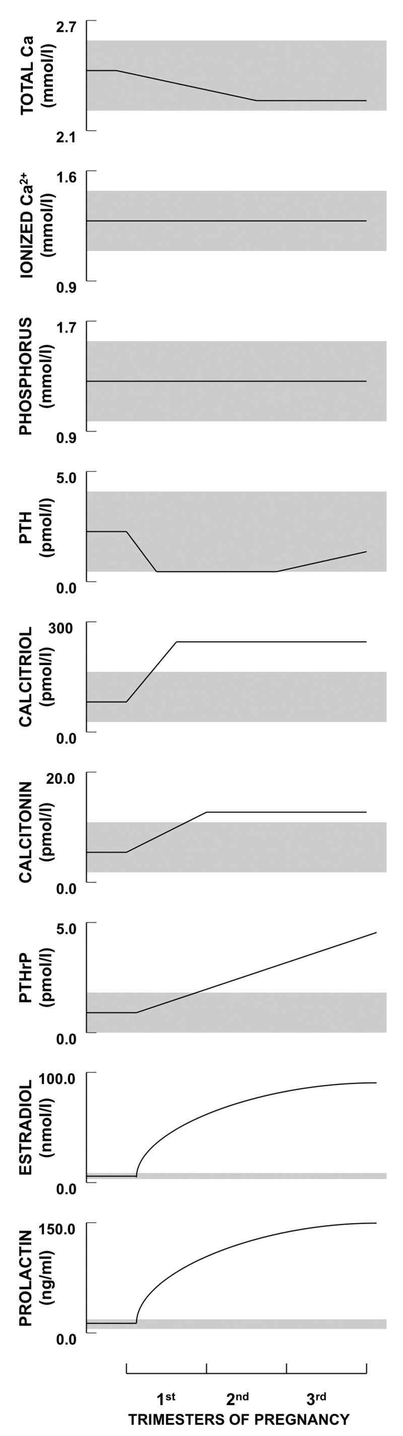 hight resolution of figure 2 schematic illustration of the longitudinal changes in calcium phosphate and