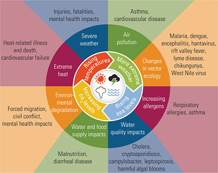 Figure 8.1. Impacts of Climate Change on Human Health.