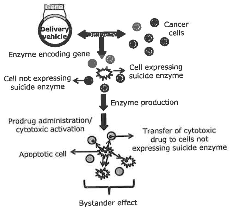 pmc articles PMC biochemj .
