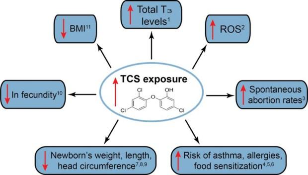 TCS exposure