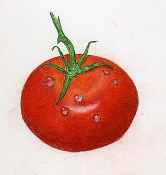 The Art Of Colored Pencil Drawing Water Droplets With Anita Sams
