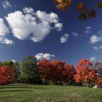 Autumn in Old Farm Lake