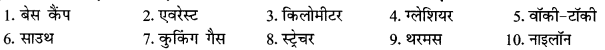 NCERT Solutions for Class 9 Hindi Sparsh Chapter 3 5