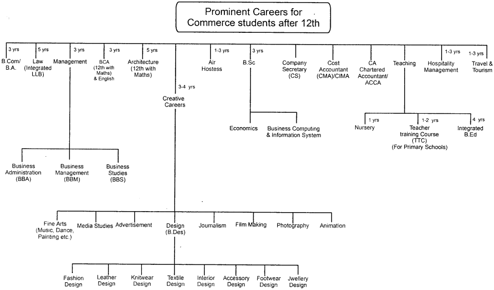 Prominent Careers for Commerce students after 12th
