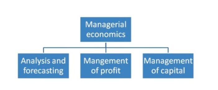 Three main attributes of managerial economics are
