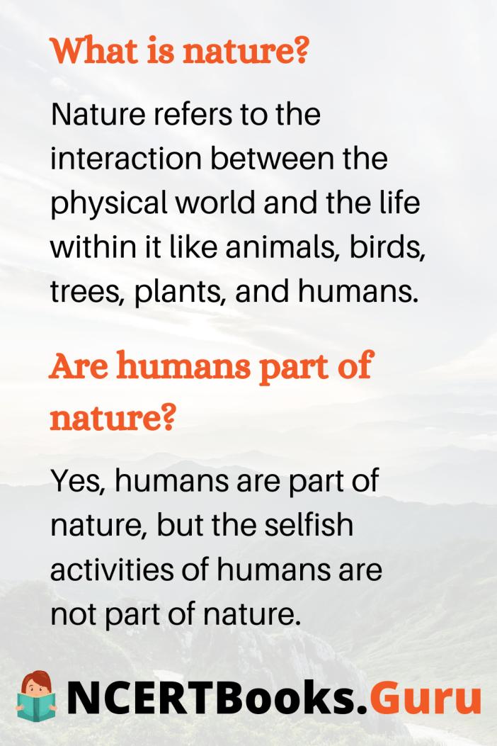Nature Essays