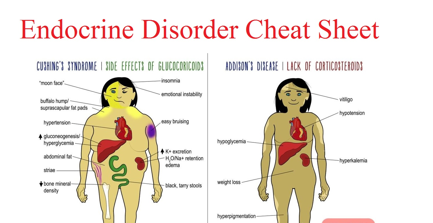 Endocrine Disorder Cheat Sheet