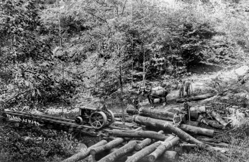 Lumber Mills In Nc