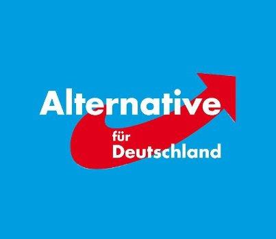 Brandebourg : aux élections de septembre 2019, l'AfD pourrait arriver en tête
