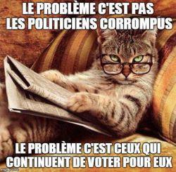 cat-probleme-pas-politiciens-corrompus-mais-ceux-qui-votent-pour-eux