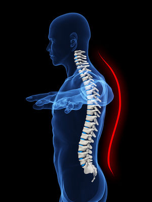 posture alignment chair round kitchen table and chairs argos health facts is the of body parts in relation to one another at any given moment requires interaction between bones muscles