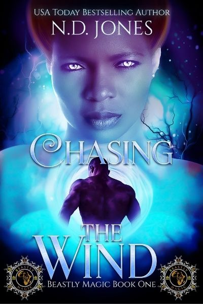 Chasing the Wind African American Paranormal Romance by ND Jones