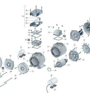 Disegno esploso motore elettrico monofase e trifase standard