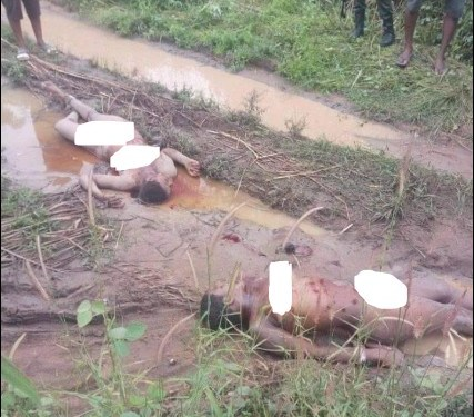 2 Ladies Stripped Unclad In Anambra, Private Parts Cut Off By Ritualists (Photo)