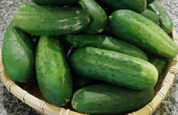 10 Health Benefits Of Cucumber You Should Know