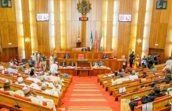 Senate Passes Bills To Establish 10 Tertiary Institutions.