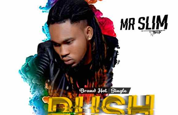 Mr Slim – Push