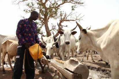Herdsmen have invaded my farmland – Abia Monarch cries out