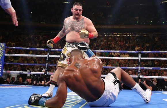 Anthony Joshua gives latest update on rematch with Andy Ruiz Jr