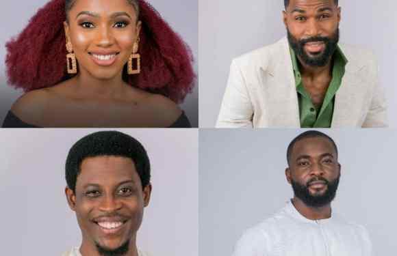 BBNaija: How Nigerians voted for Mercy, Mike, Seyi, Frodd, others