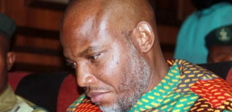 Biafra: Nigerians abroad speak on Nnamdi Kanu, IPOB activities, issue strong warning