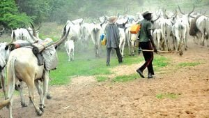 How we stopped herdsmen from invading our land – Cross River Monarch
