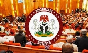 Two ministers, DG under Senate probe over importation of syringe, needles