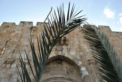jerusalem_palm_sunday