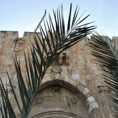jerusalem_palm_sunday