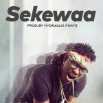 Tinny – Sekewaa (Prod. By Hydraulix Fonye)