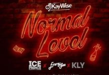 DJ Kaywise - Normal Level ft. Kly, Emmy Gee & Ice Prince
