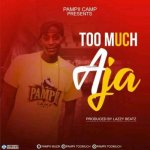 Too Much – Aja (Prod. By Lazzy Beatz)