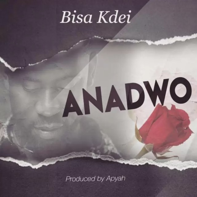 ANADWO - Bisa Kdei – Anadwo (Prod. by Apya)