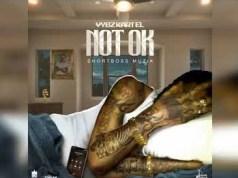 Vybz Kartel – Not Ok (Prod. By Short Boss Muzik & Vybz Kartel Muzik)