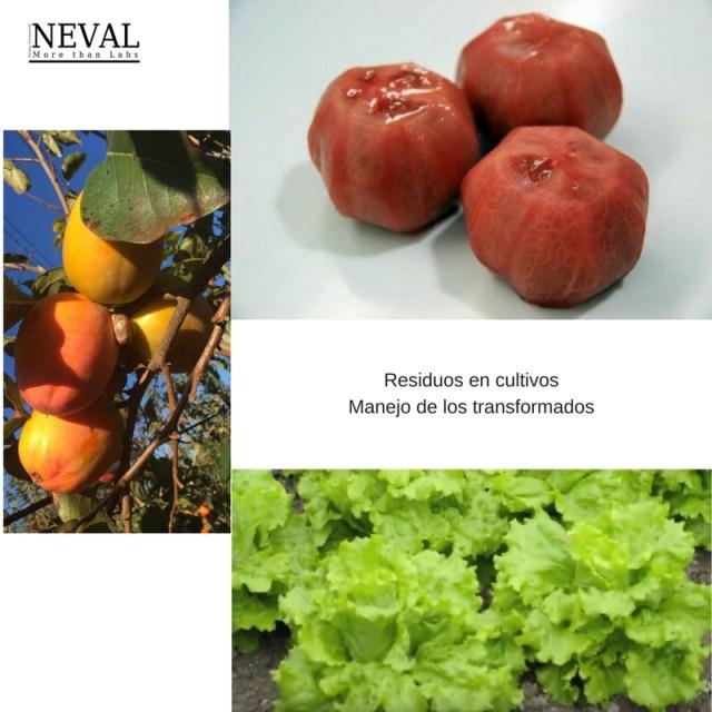 Residuos en cultivos