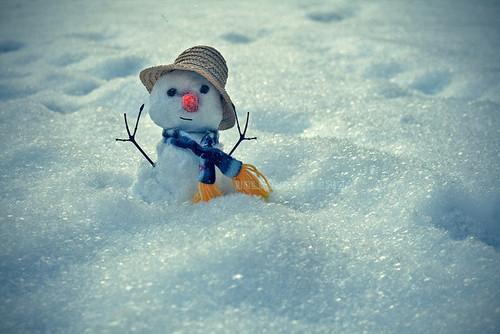 om de zăpadă topit
